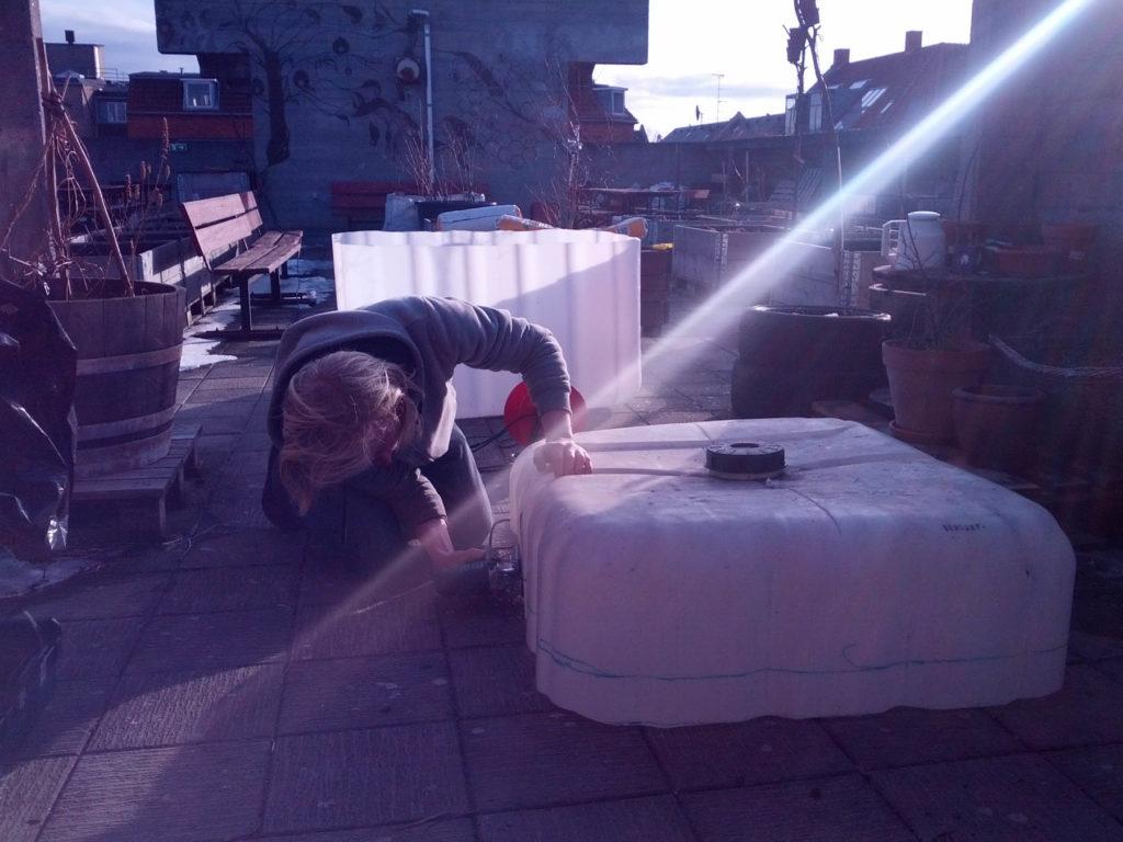 Solnedgang og tilretning