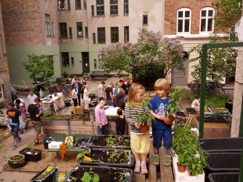 Kapillærkasseworkshop maj 2013. Nye venskaber i et urban gardening projekt.
