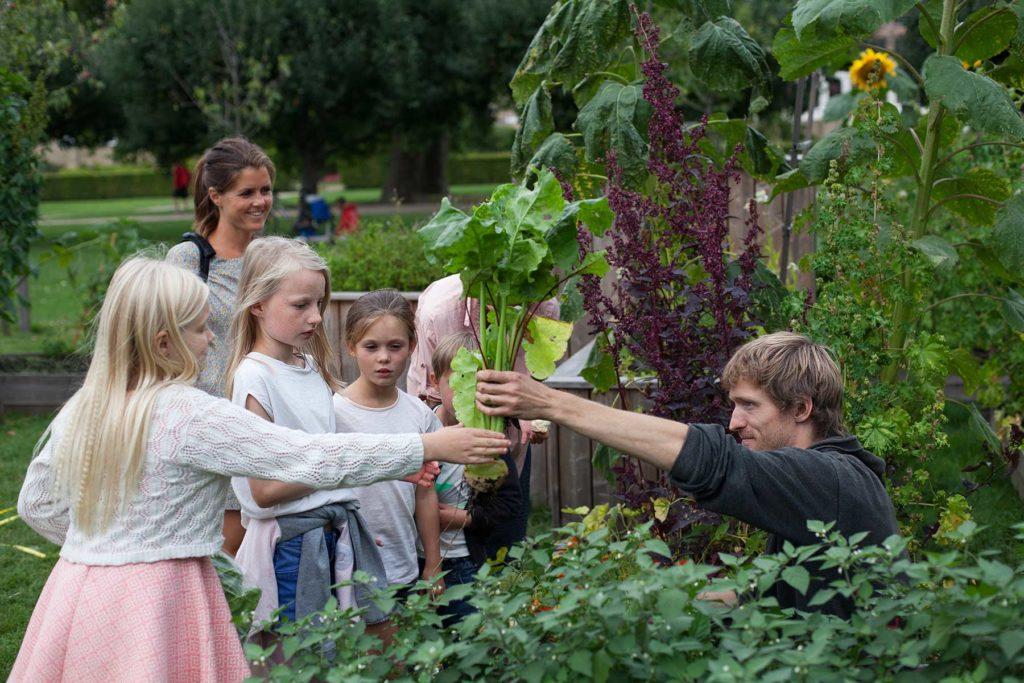 Kongens Køkkenhave – en byhave i hjertet af København