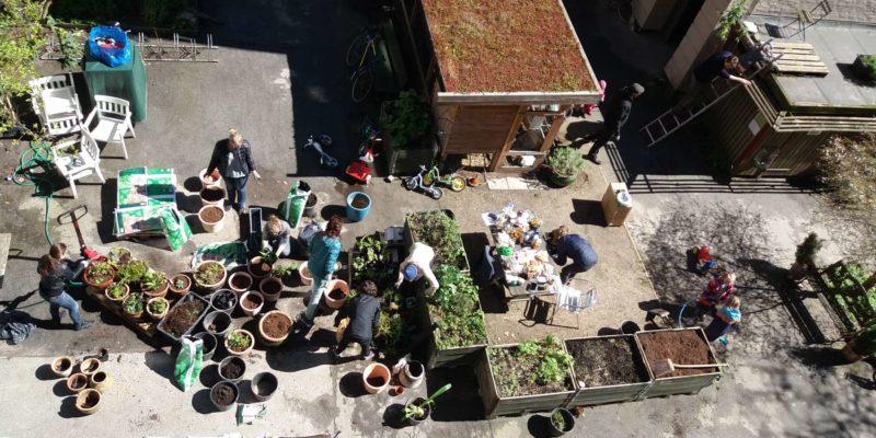 Urban gardening fælles gårddag
