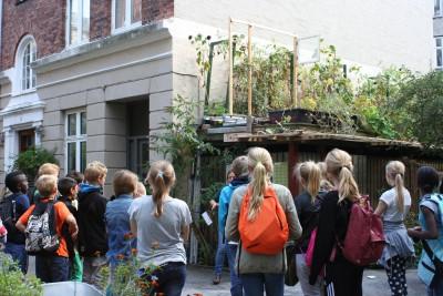 Dagbladet Information, frøhøst og skolebesøg af 5a fra Absalons skole i Roskilde