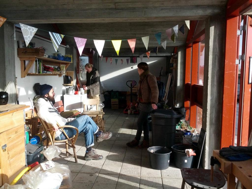 Foderbræt, kommende forspirringscentral hos Dyrk Nørrebro samt høns og bier til vores baggård