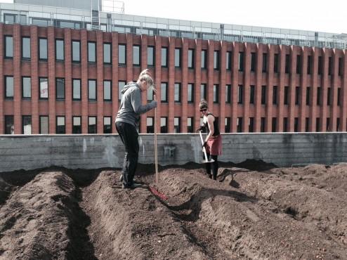 Østergro_2014-02-12_Kristian-Skaarup_foto 4