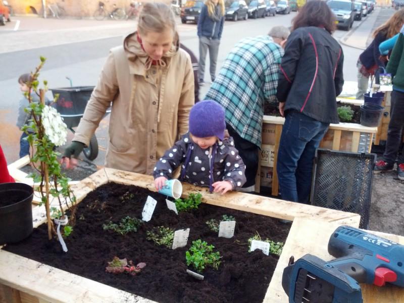 Glæde ved Urban Gardening i KøbenhavnIMG_20140329_174902