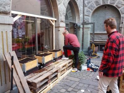 Huset i Magstræde har fået baggårdshave ala TagTomat