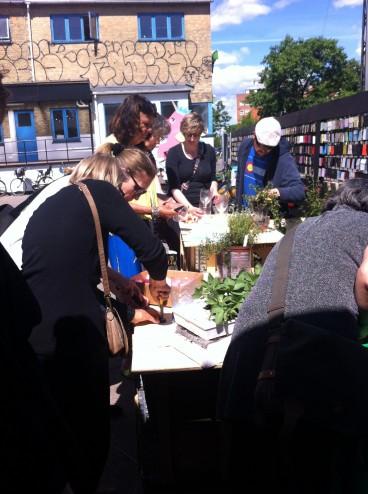 Krydderurteworkshop TagTomat_2014_06-15_rundvisning-Østerbro-Lokaludvalg_IMG_6140