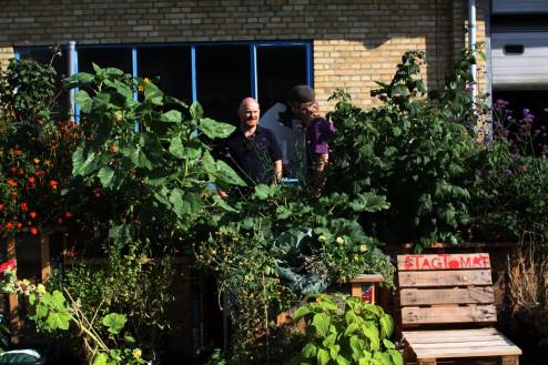 Selvvandende planterkasser foran værkstedet på Vermundsgade 13