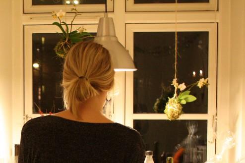 Orkideer som værtindegave til nytår 2013