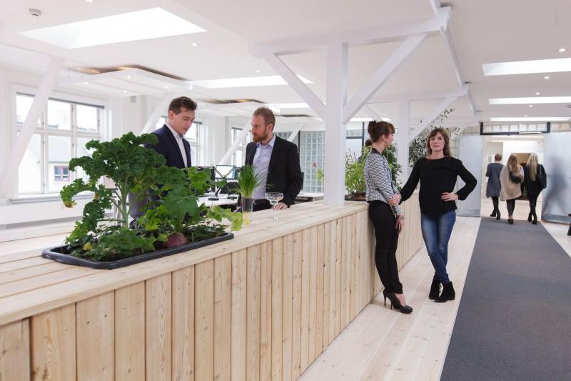 Uformelle kundemøder og fremvisning af produkter med plantemøblet som scene