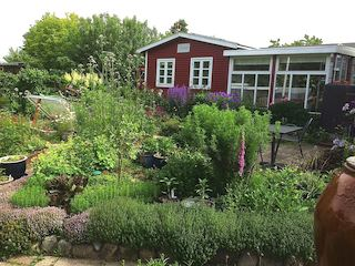 Økologisk dyrkning i byen med Jens Juhl