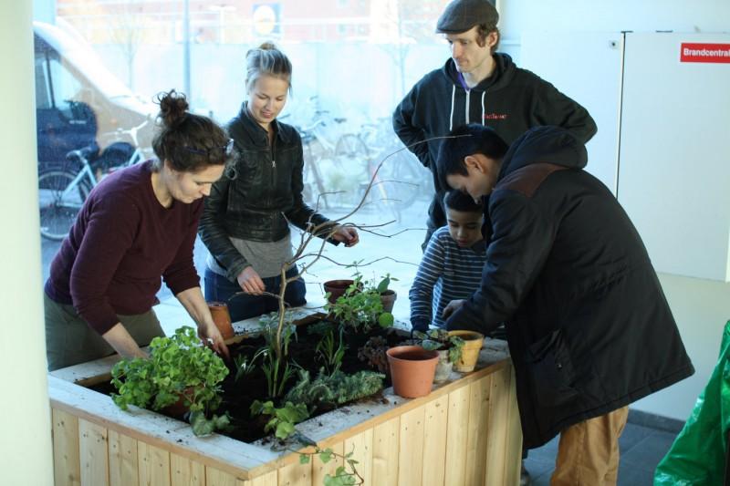 Katja instruerer beboerne (og Mads) hvor og hvordan planterne bør sættes
