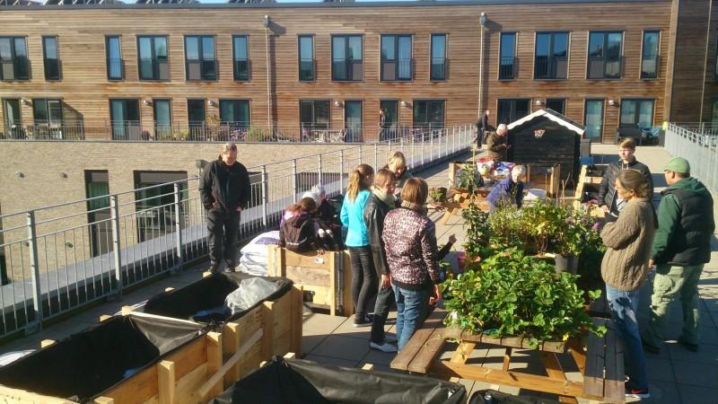 Beboere klar til at fylde jord i højbede og plante ud.