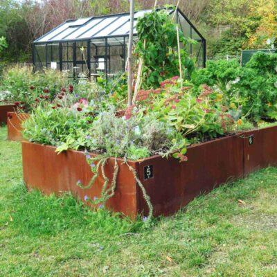 corten round garden beds - photo #2