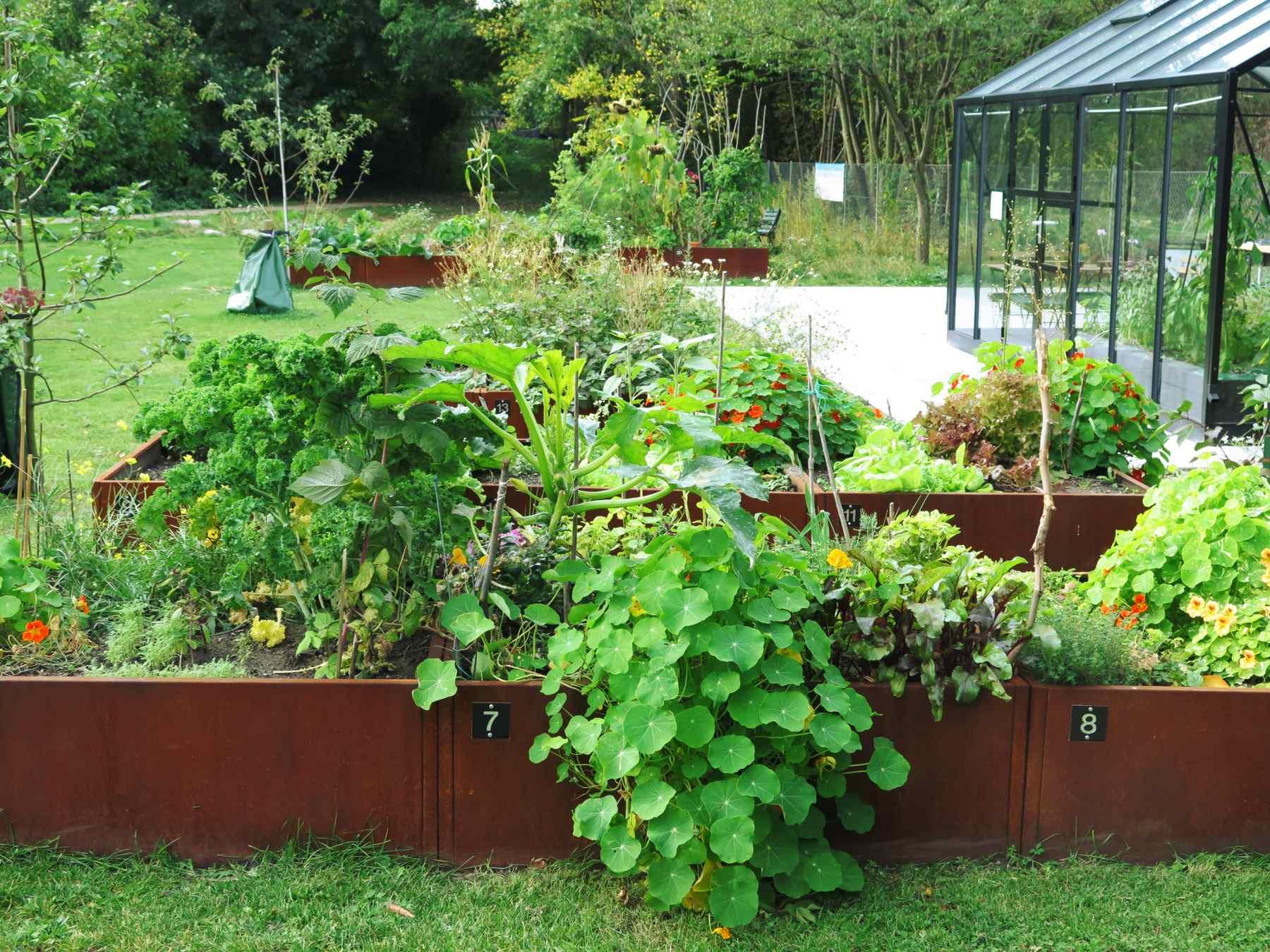 Plantekasser udendørs