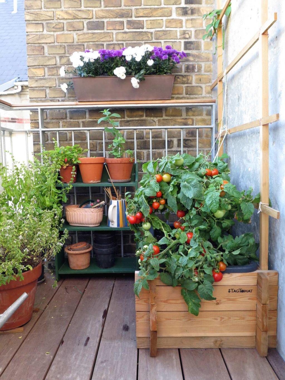 Altanworkshop – indret din altan og skab en grøn oase