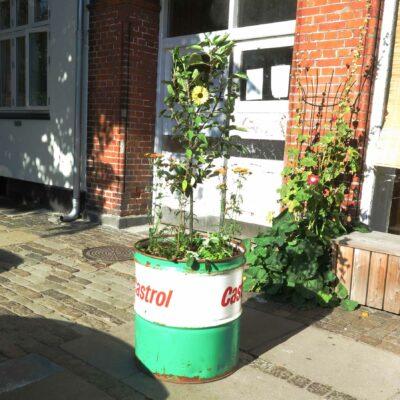 Tøndebed selvvandende plantebeholder
