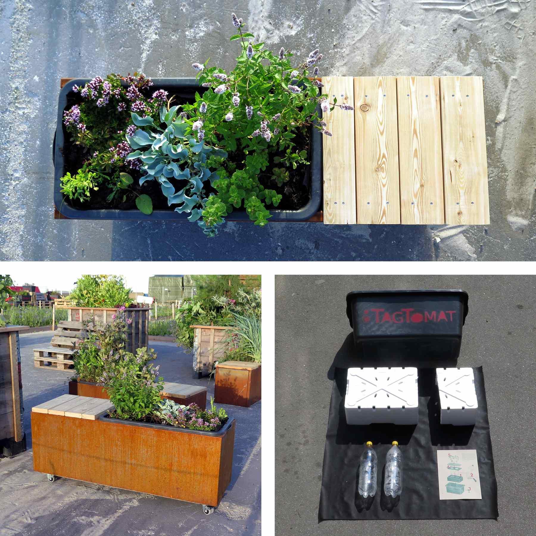 Plantekasser - med eller uden selvvanding - TagTomat