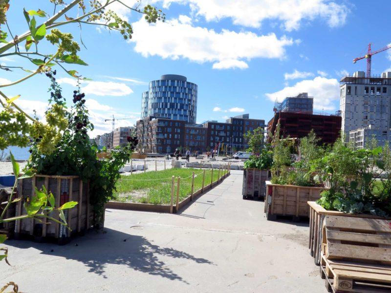 Kig ind over den nye bydel - Aarhusgadekvarteret
