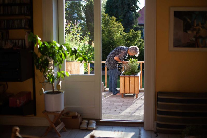 Krydderurterne ses tydeligt fra dagligstuen, og det grønne trækkes ind og skaber dufte og nydelse.