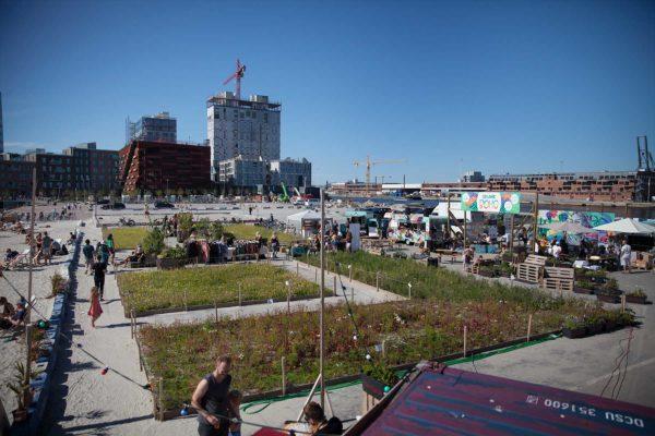 Redmolen - fællesskabet styrkes, før byen bygges i Københavns Nordhavn