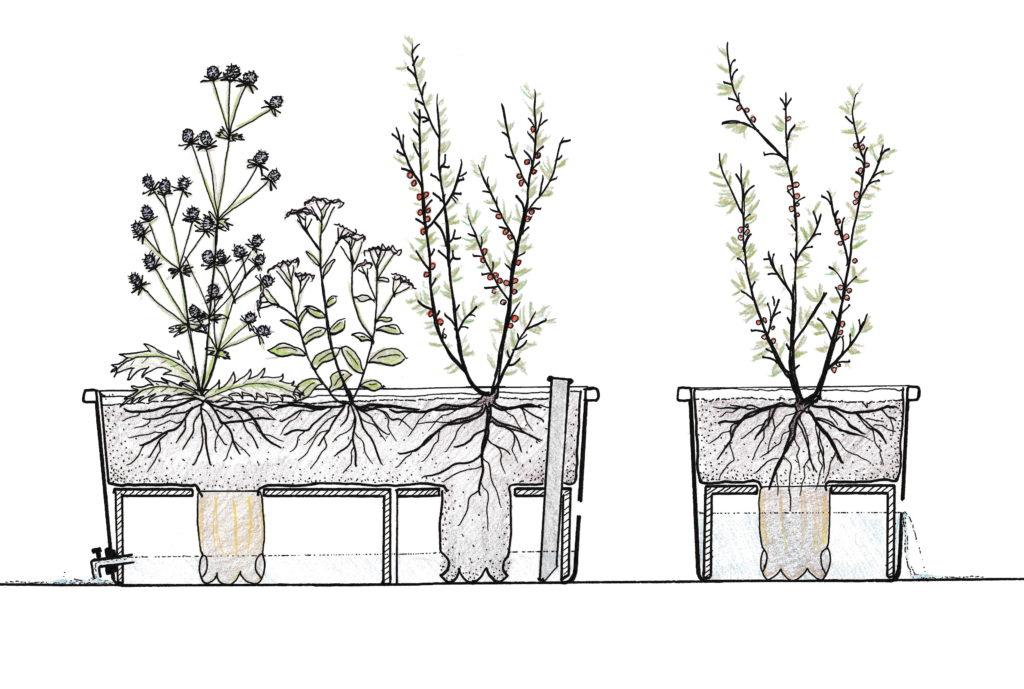 Pasningsguide til selvvandende plantekasser med internt reservoir