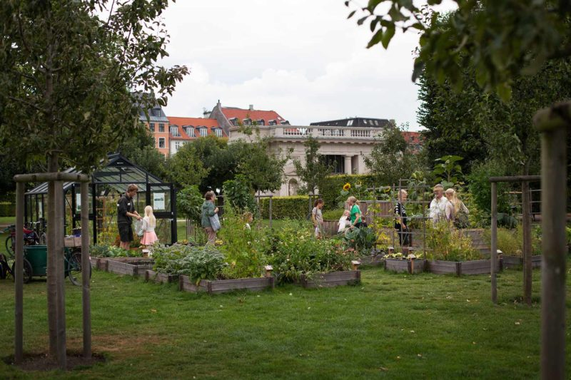 Kongens Køkkenhave - Urban Gardening