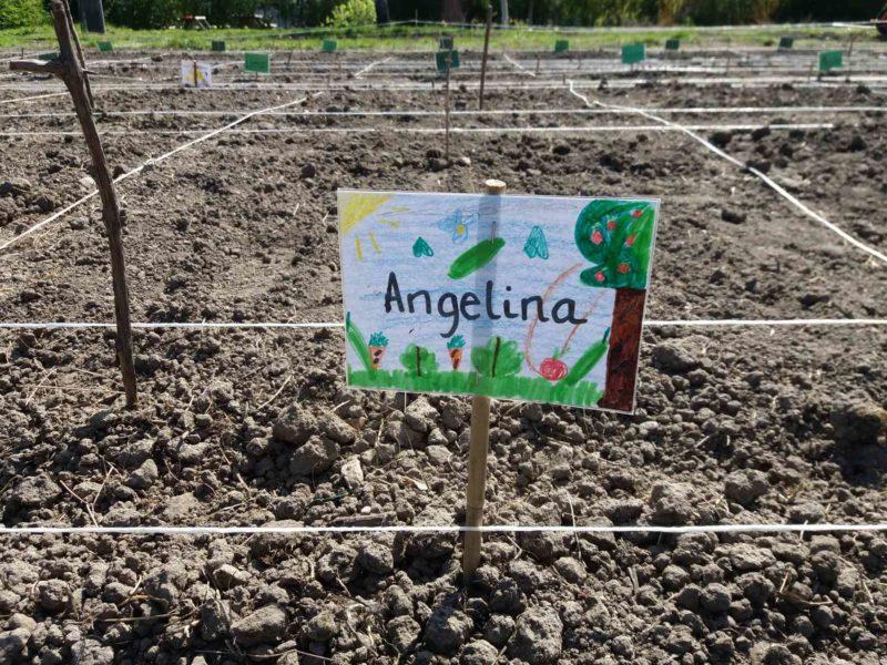 Til første havedag medbringer eleverne laminerede navneskilte de selv har lavet til skolehaver.