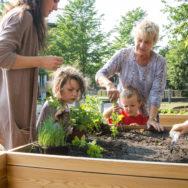 Fælleshaver i boligforening skaber lokalt fællesskab med hjælp fra TagTomat
