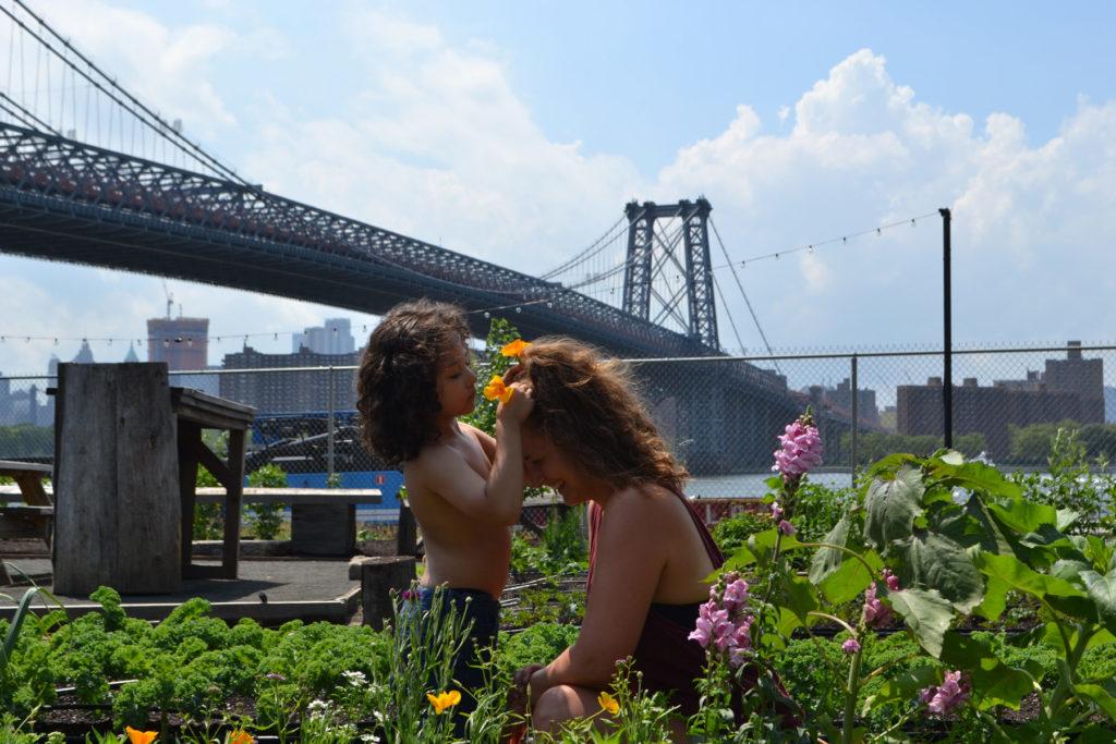 Community gardening – det spirer i New York