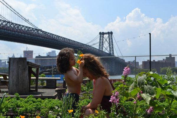 Community gardening - det spirer i New York