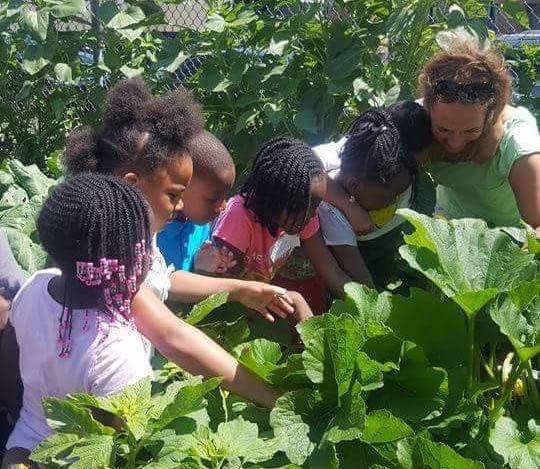 Bider den!? Squashhøst til summercamp for mindre privilegerede børn i Brownsville i det østlige New York.