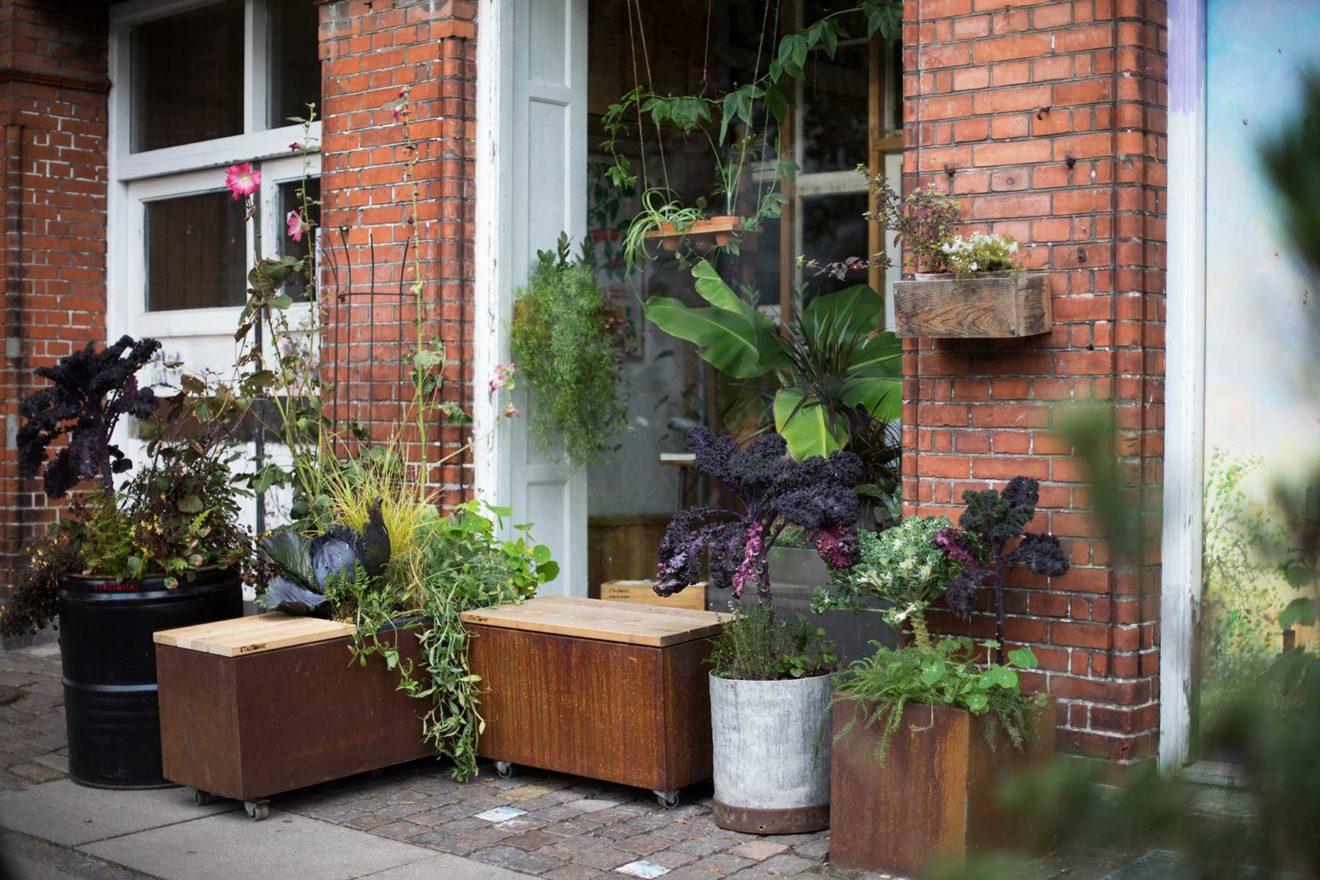 TagTomat-Plantekasse-indretning-terrasse-byrum-fortovshave-2017-10-17_IMG_004_WEB_Kristine-Kiilerich