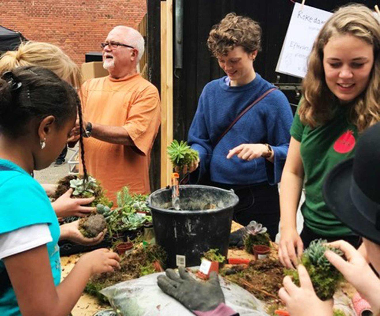 Kokedamaworkshop: lær at lave de fine, dekorative mosbolde - i efterårsferien