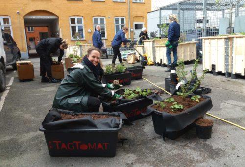Hos Meyers Madhus pakkes den gode mad ind i grønne omgivelser