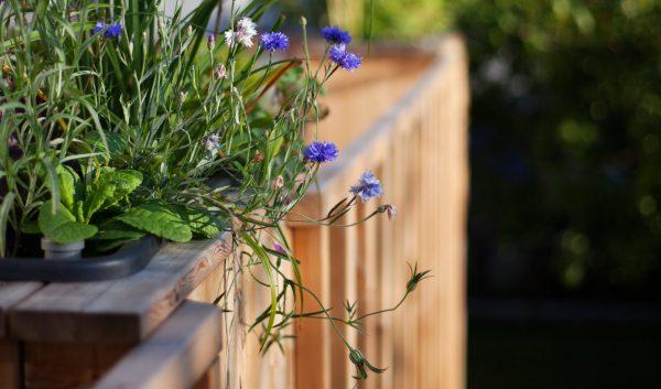 Plantekasse på terasse, altan eller have