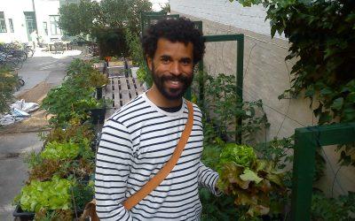 Opbinding af TagTomatplanter og masser af TagSalat