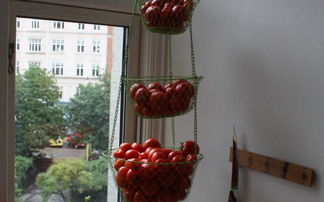 Rundvisning for entusiaster i lørdags og på ArkitekturensDag den 1. oktober fra 12-18. Fem kilo høstet i fredags :-)