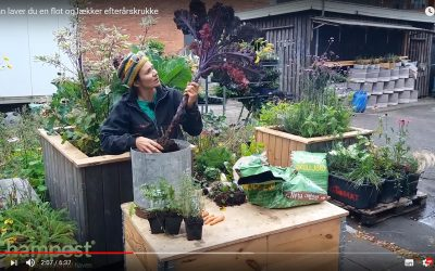 Lav en lækker efterårskrukke med Anne Tange