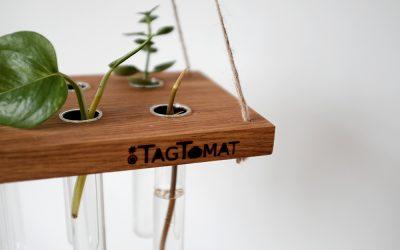 Nyhedsbrev: Lav dine egne stiklinger, pt. 2 | What is Urban Gardening?