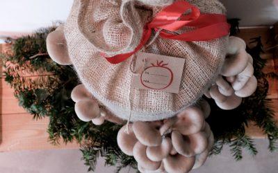 Nyhedsbrev 2020-12-17 | Bestil julegaver til levering på privatadresse senest fredag den 17/12 | Guides til julehyggen | God jul og tak for i år
