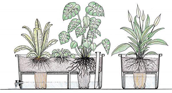 Plantekassemodul tegning tværsnit
