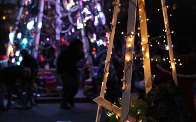 Grønkålsjuletræ til Vesterbros juletræsfest 2014 med TagTomat