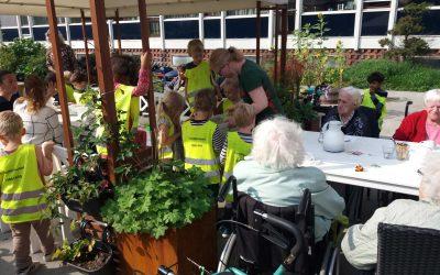De ældste møder de yngste i haven – Plejecenter Møllehuset & Forfatterhusets Børnehave
