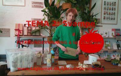 Fjernundervisning Tema 2 – Svampe – Opstartsvideo dag 1
