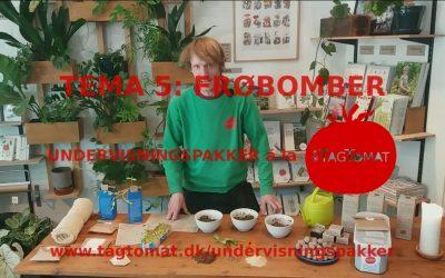 Undervisningspakke Tema 5: Frøbomber – rul frøbomber og lad byen blomstre – Guide