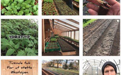6.3 Minilandbruget Økotopen: Bæredygtighed i praksis