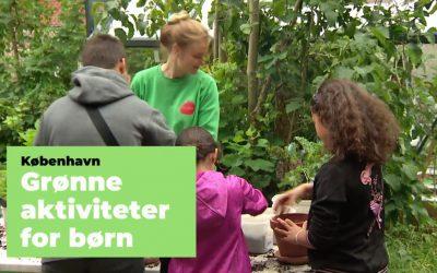Nyhedsbrev 2020-07-10 | Download Køkkenhave à la TagTomat | Grønne aktiviteter på legepladser | Undervisningsmateriale til udskoling | 50% af crowdfunding